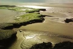 Marée basse 6